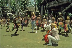 50001831 (wolfgangkaehler) Tags: people tourism photography dance dancers dancing ceremony dancer tourist tourists tribes tribe papuanewguinea photographing tribaldance newguinea oceania villagelife ceremonial tribesmen nativepeople tribespeople ceremonialdress riverpeople sepikriver peopleworldwide sepikriverpng