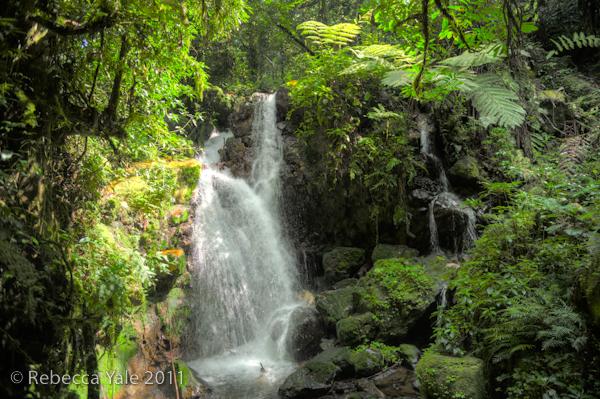 RYALE_Rwanda_Uganda_Safari-165