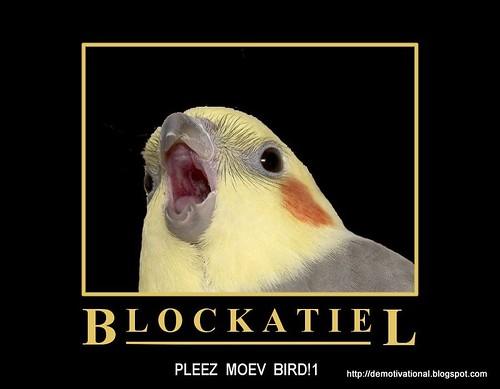 Pleez Moev Bird!