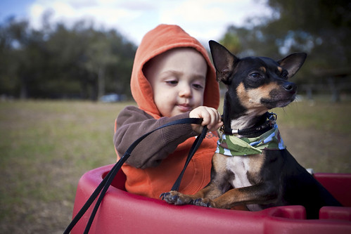 Boy with Dog on Lease