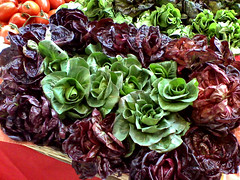 Costonetto. (Tom Lee KelSo) Tags: salad insalata freshvegetables costonetto