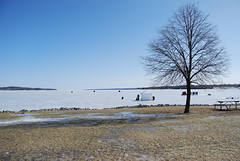 Lago congelado (ZylyP) Tags: lakeshore barrie frozenlake winterfishing