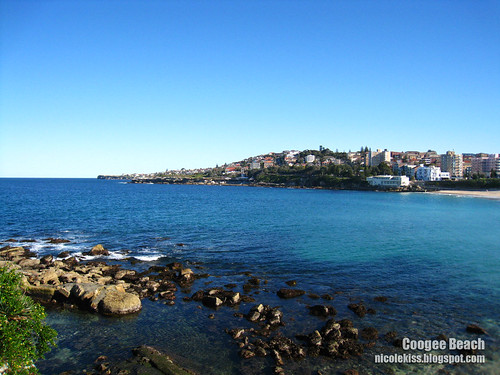 coogee beach starting point wallpaper
