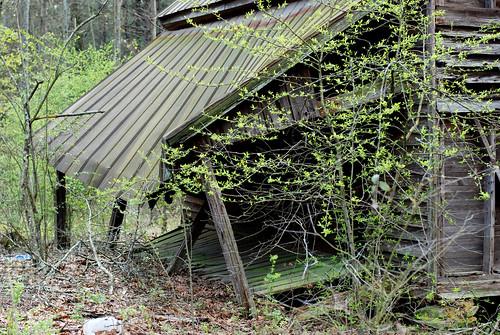 v rural decay 014