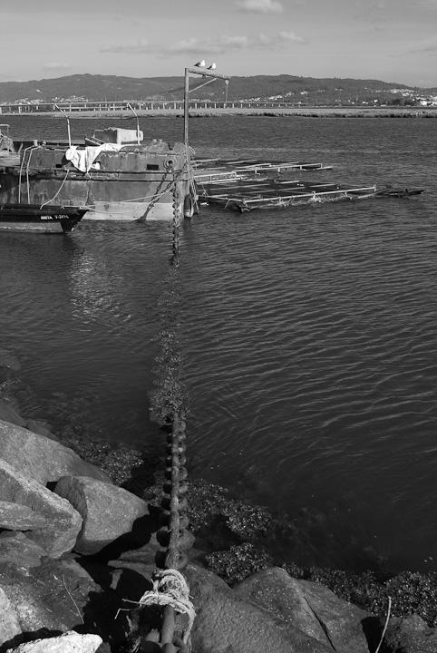 Rio Lima dos Batelões e das Gaivotas