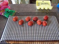 Greek Eggs (cooling) (Eric L Griffin) Tags: easter greek egges