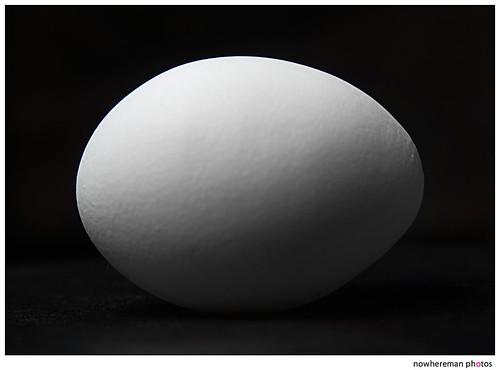 Egg, Day 2
