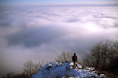 Above the clouds (๑۩๑ V ๑۩๑) Tags: winter white mountain snow nature forest hungary bükk magyarország ilobsterit
