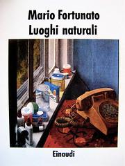 Mario Fortunato, Luoghi naturali, Einaudi 1988, impostazione grafica di copertina: Federico Luci; immagine alla copertina: Nature morte au chevet, di Catherine Murphy (part.) 1