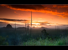 Glasshouse Mountains Sunset (Matthew Stewart | Photographer) Tags: light sunset orange mountains grass clouds canon matthew hills stewart qld queensland glasshouse sunshinecoast 2470 gemofnature