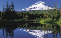 Nature - Mt Hood, Oregon