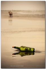 Yarrr...!! That be me sms! (solidskorpion) Tags: sea dog reflection beach water bottle message cork taiwan pirate  winebottle  taoyuan cheesy sms 70200mm yarr messageinabottle
