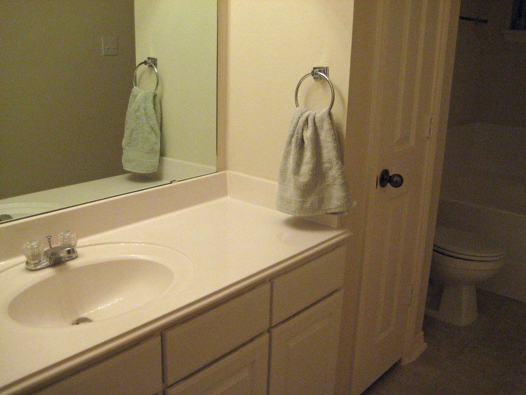 master bathroom (sink)