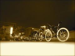 @ Karashima Park 2009.6.13