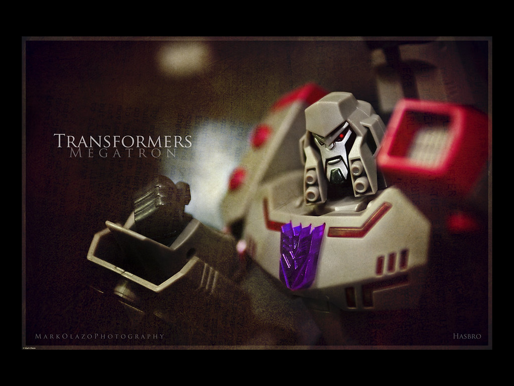 A Day With Megatron