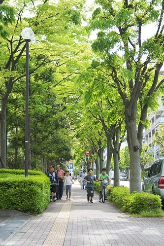 町田樹 画像25