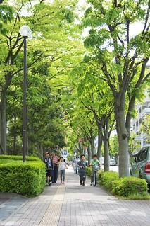 町田樹 画像8