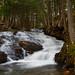 Brook Hill Falls