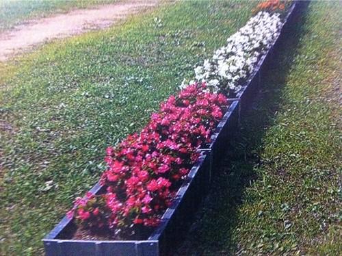 がれきをリサイクルして、被災地にお花を100セット届けるプロジェクト