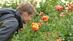 sniff (estherase) Tags: emssimp findleastinteresting 0f jon noj nojjohnson friend rose flower roses regentspark rosegarden friends