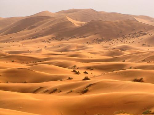 Ergs Regs Hamadas The Sahara Desert A Geomorphological Approach - Sahara desert location