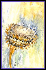CARDOON EXPLOSION (Louise001) Tags: white flower art ink watercolor mixedmedia thistle seedhead cardoon signouniball