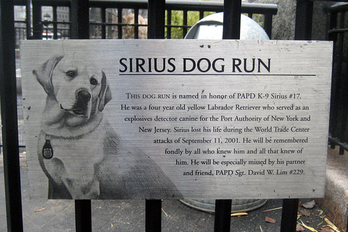 PAPD K-9 Sirius Dog Run by Sheena 2.0™.
