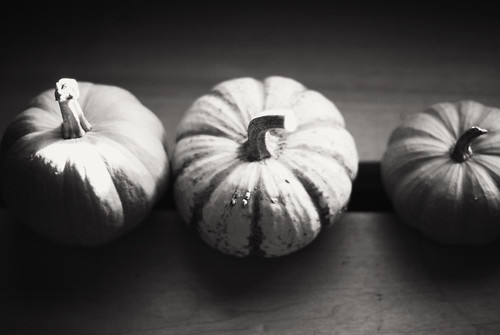 Three gourds (by pricklypearbloom)