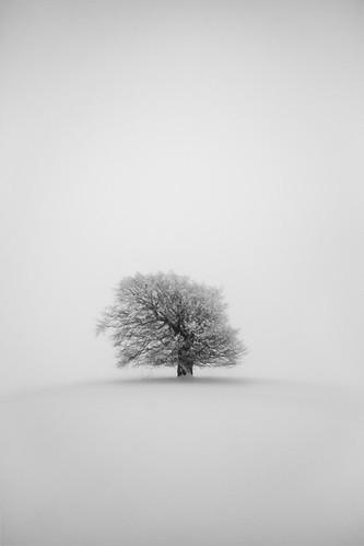 Winterlandschaften fotografieren: 5 Tipps für Einsteiger