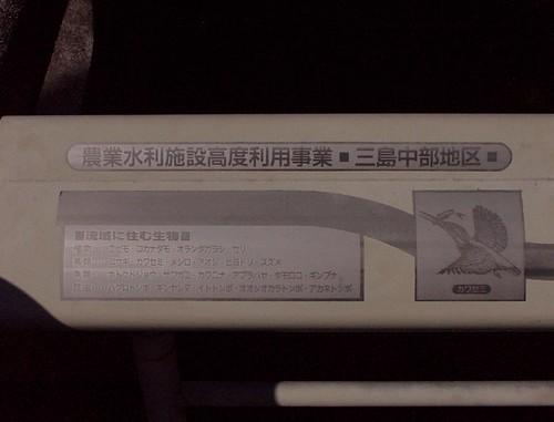 19990905_068