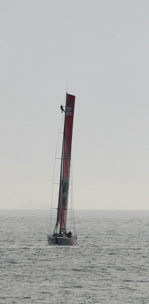 Il Mostro (Puma Ocean Racing) with a man in the mast (by niklausberger)