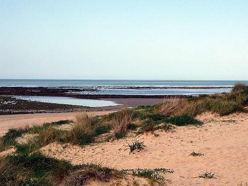 Punta Candor 1