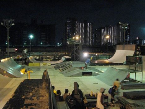 3298522248 405eaeaa83 o 10 Arena Skateboard Yang Super Keren