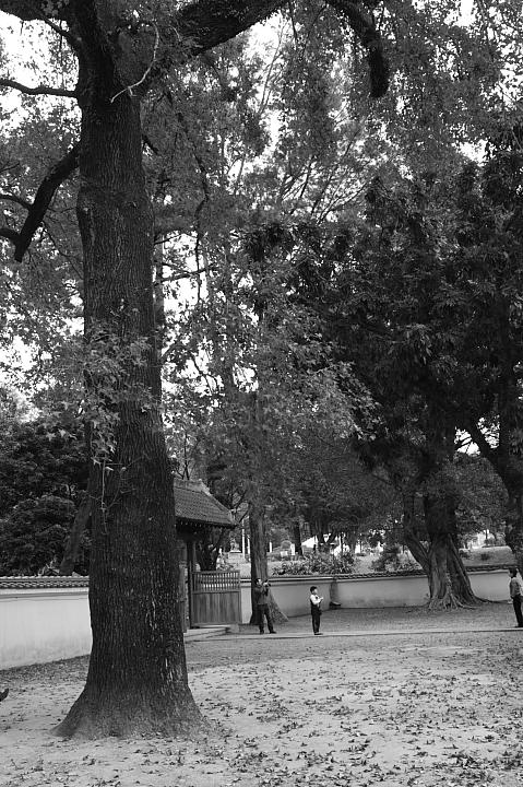 嘉義市史蹟資料館(黑白)18