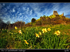 "The ""JJ"" and Wiffsmiff Challenge! (opobs) Tags: sky castle grass clouds fence spring carmarthenshire afternoon wideangle explore april canon5d 2009 daffodils bcc wfc 1740mml dryslwyncastle welshflickrcymru opobs bridgenddistrictcameraclub michaeljstokesawpf colinfilter"