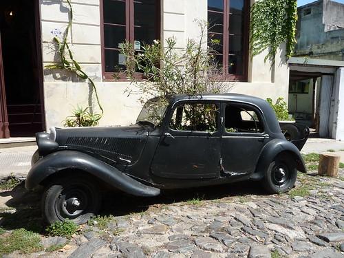 Giardino segreto in vecchie auto. Colonia del Sacramento
