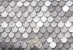 Grey fish-scale pattern (:Linda:) Tags: texture germany grey thringen village shingle row symmetry thuringia onecolor slate thuringian schiefer brnn similarto monocolored resembling beavertailshaped fishscalepattern schieferschindel fischschuppenmuster