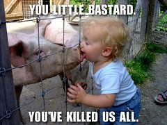 This is how swine flu jumped from pigs to humans? (sharaff) Tags: fun lol swine virus swineflu notmyshot uploadviamms justforthelolz scientistslookingatthewrongplace noneedtocommentiwillremove nowdontkissstrangers kissfishesinstead