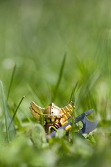 they're here!!! (Mr Din) Tags: bear macro green grass photography photo lego dwarf misc helmet axe 2009 nain teigneux