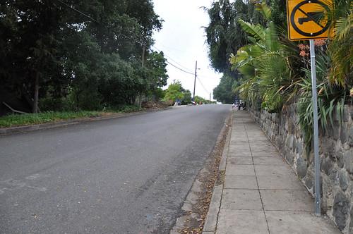 Cat's Hill