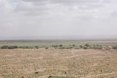 The Battlefield Of Carrhae