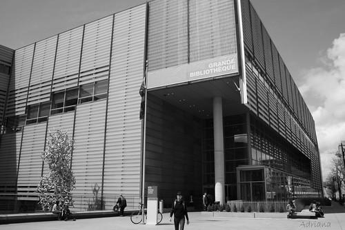 La Gran Biblioteca