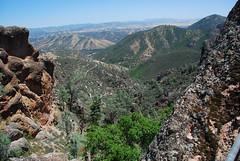 Pinnacles 2009 083