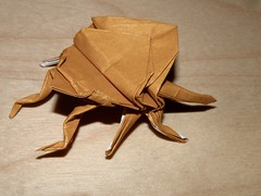 I'm givin' it a try (Vanilla Monkey Bear) Tags: origami beetle