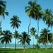 Gulf of Guinea Coast