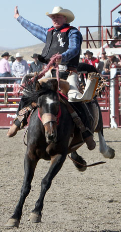 cowboy riding saddle bronc
