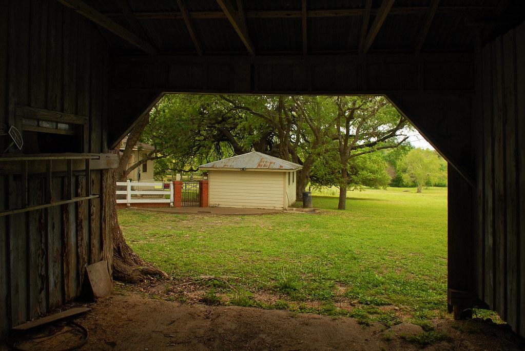 Spring Wild Flower Tour No. 13: Texas Countryside