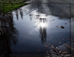 Raggio di sole (Luana_58) Tags: reflexions dazzlingshots goldstaraward flickrestrellas gnneniyisithebestofday yourcountry mirrorser 5abovestream vipveryimportantphotos