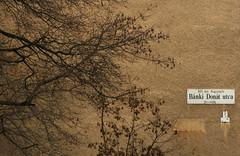 Bánki Donát utca (sonofsteppe) Tags: street old winter urban brown black detail building tree sign horizontal wall architecture dark daylight hungary branch exterior outdoor bare budapest nobody explore simplicity series weathered pentacon simple exploration manualfocus streetname twiggy 135mm bough streetplate wallscape sonofsteppe pusztafia zugló utcatábla streetplatesofbudapest nagyzugló bánkidonátutca urbanlifeoftrees