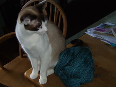ruby with yarn
